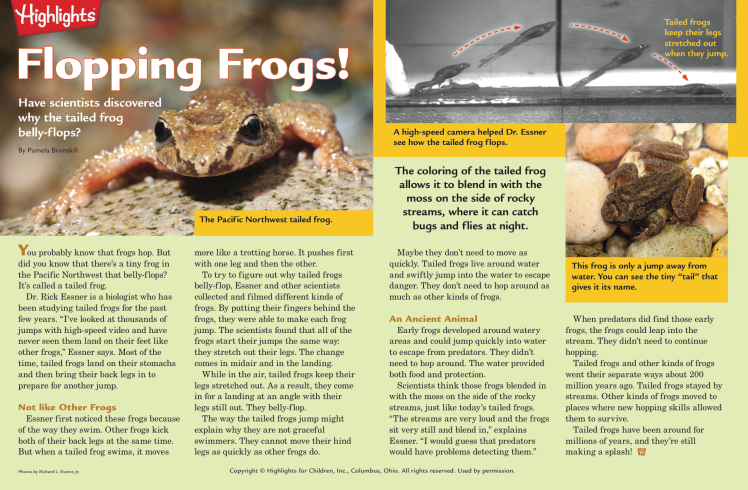 flopping_frogs
